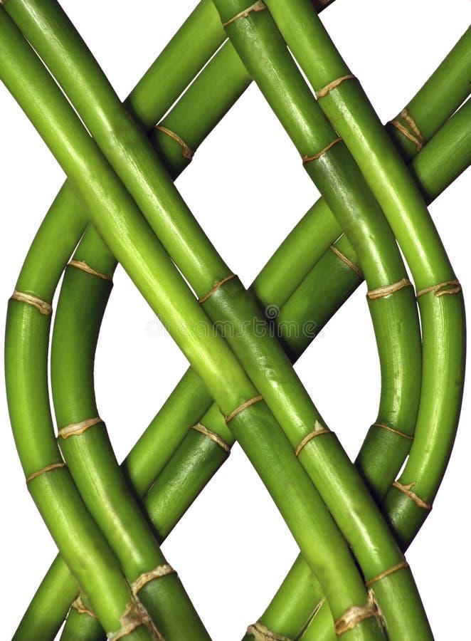 braided bambu arkivfoto