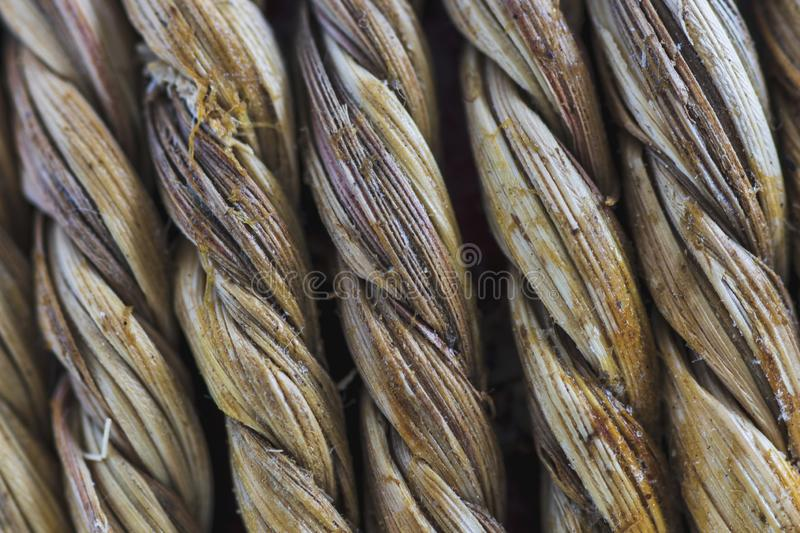 Braided natural fibers. Extreme macro stock image