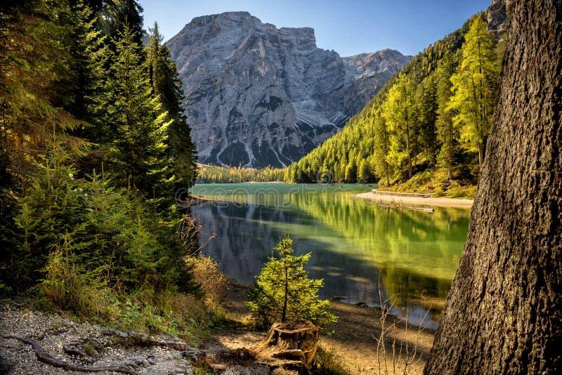 Braies湖,白云岩,特伦托自治省女低音阿迪杰,意大利 图库摄影