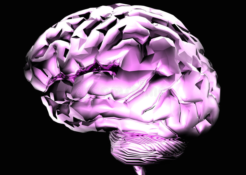 Download Brain Royalty Free Stock Photography - Image: 641967
