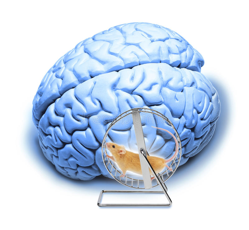 Brain Abstract Stress Exercises Memory royalty free stock image
