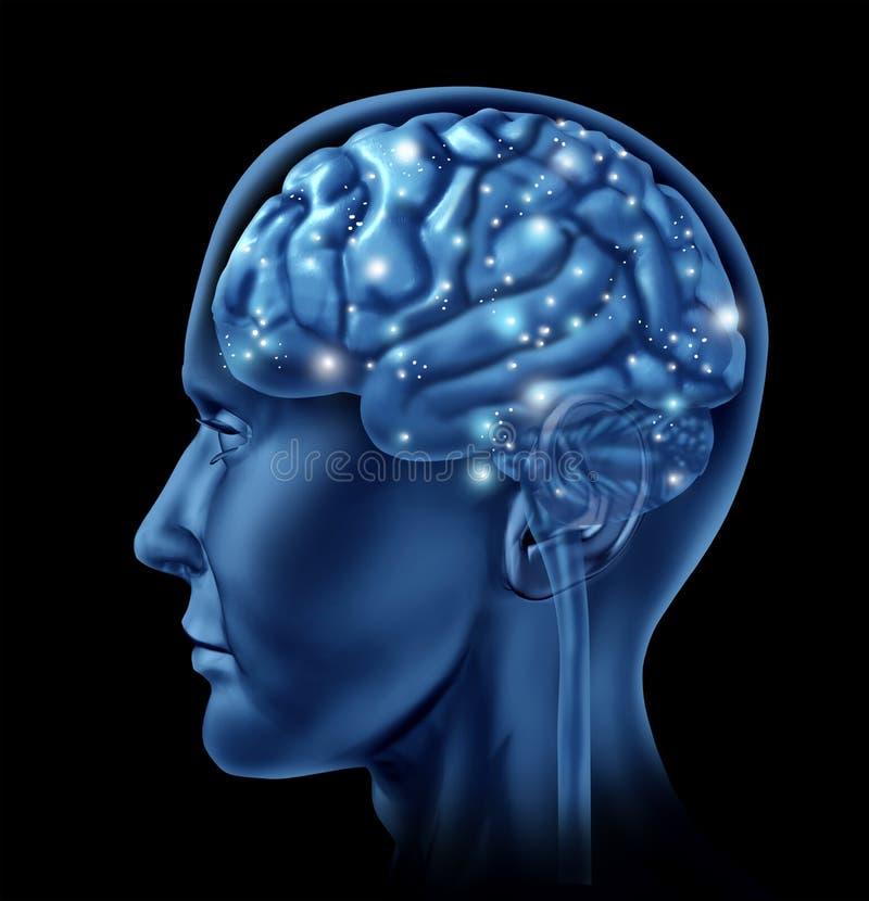 Download Brain Activity Intelligence Stock Illustration - Image: 16075009