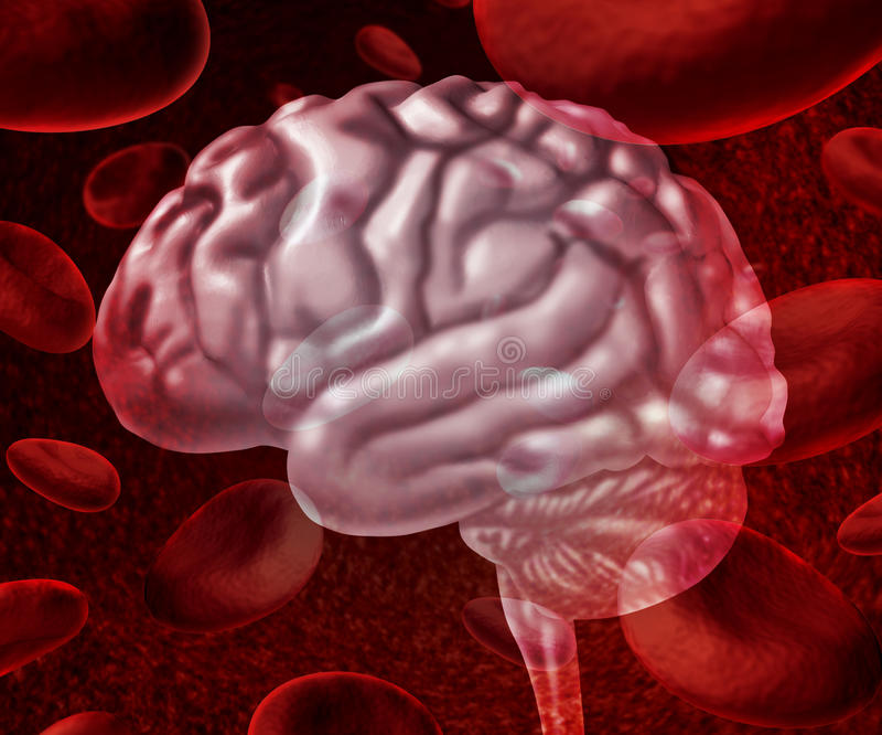Brain Blood vector illustration