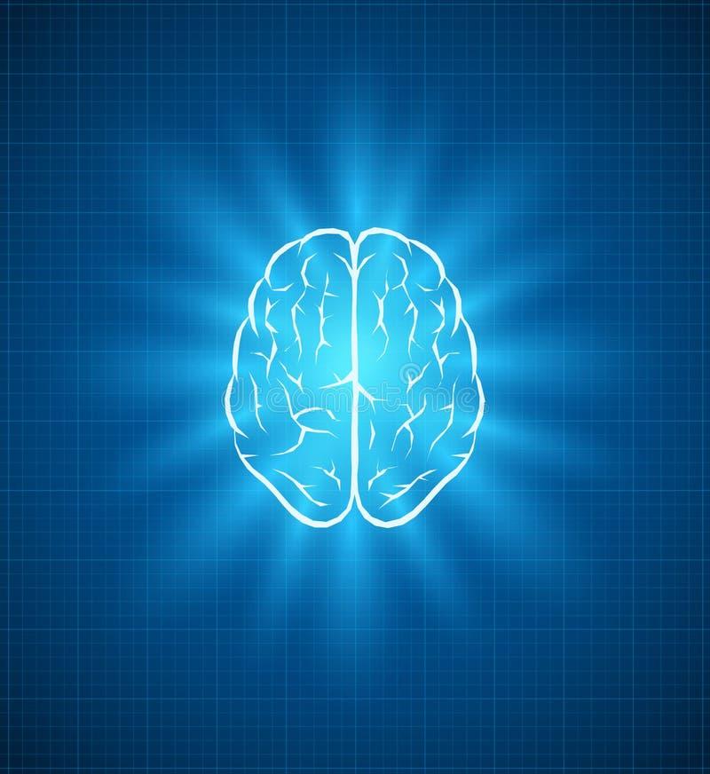 Brain blueprint royalty free illustration