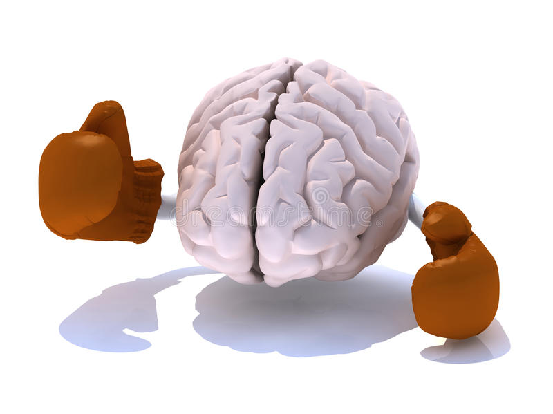 Brain With Boxing Gloves Stock Photos