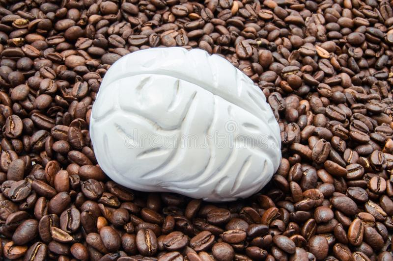 Brain and coffee caffeine. Brain model is among coffee beans. Influence of coffee on the brain, nerve cells neurons, their fun royalty free stock photo