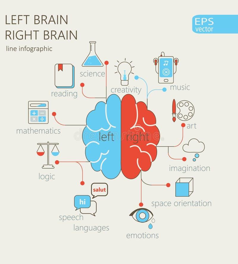 Brain Concept izquierdo y derecho stock de ilustración