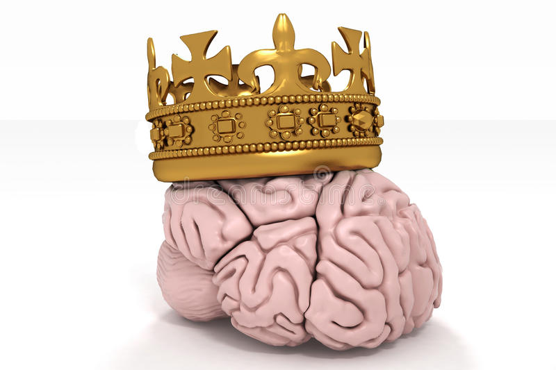 Download Brain with crown stock illustration. Image of king, element - 22610066