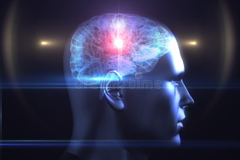 Brain diagram in human head. On black background royalty free illustration