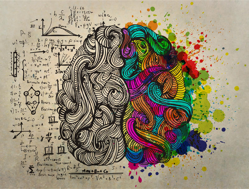 Brain doodle concept about creative right side and logical left side stock illustration