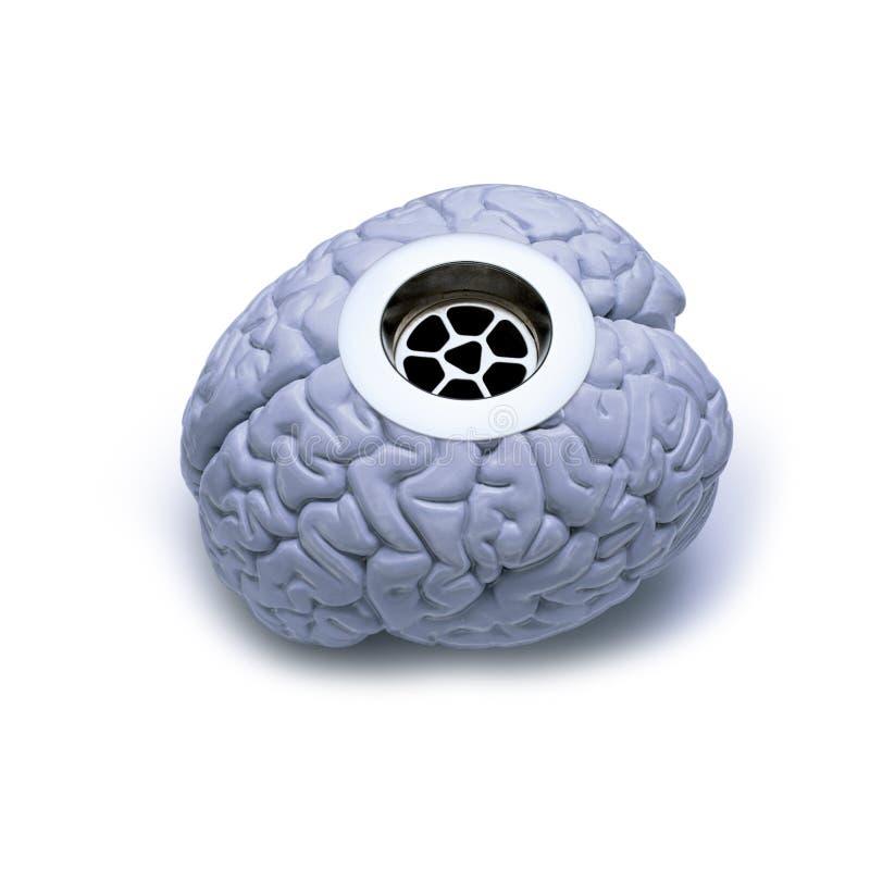 Download Brain Drain stock image. Image of loss, emotion, gray - 7304975