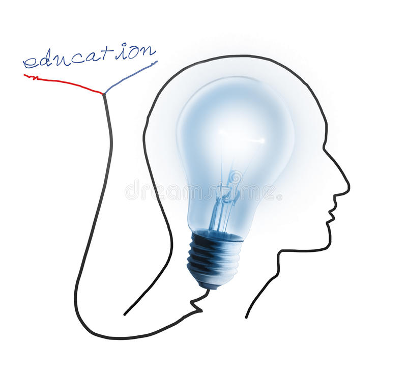 Brain drawing with light bulb royalty free illustration