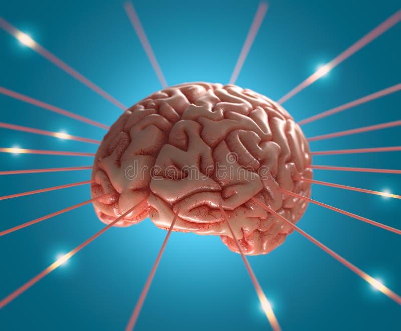 Brain Energy Stock Photo