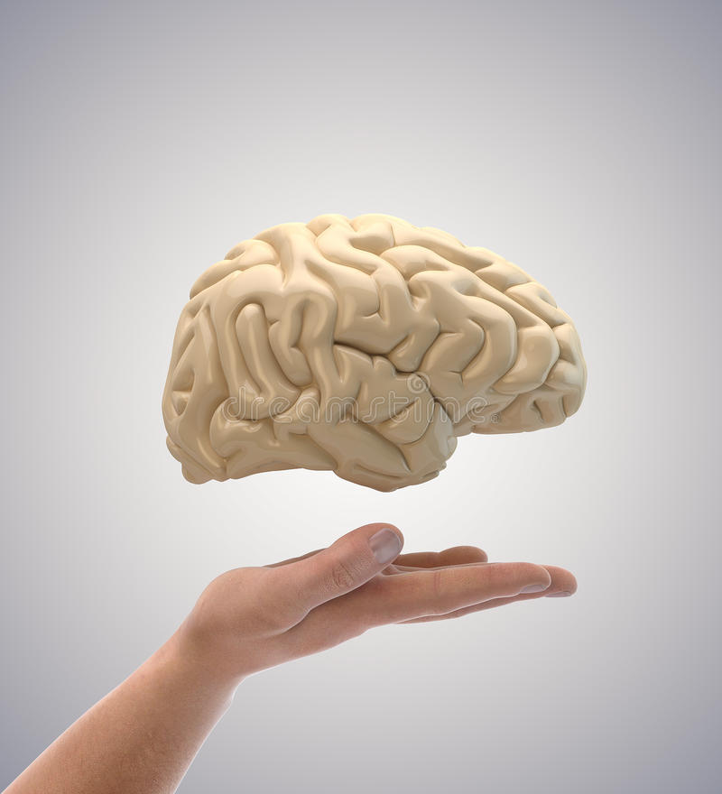 Download Brain in hand stock image. Image of hands, artificial - 24904343
