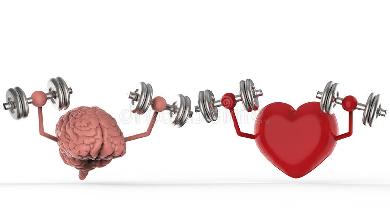Brain and heart holding dumbbells. 3d rendering brain and heart holding dumbbells vector illustration