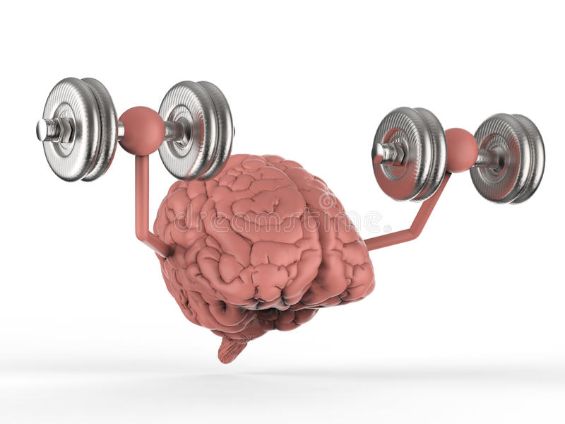 Brain holding dumbbells. 3d rendering brain holding dumbbells on white background royalty free illustration