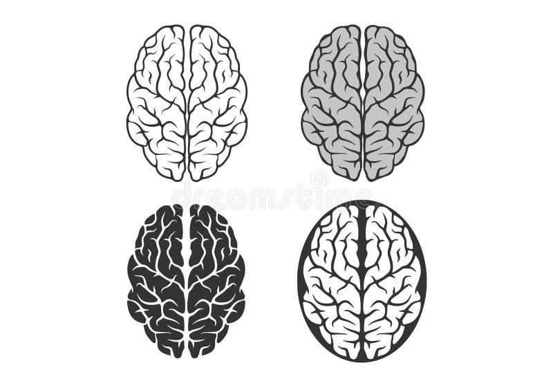Brain icon set outline isolated vector mind symbols royalty free illustration