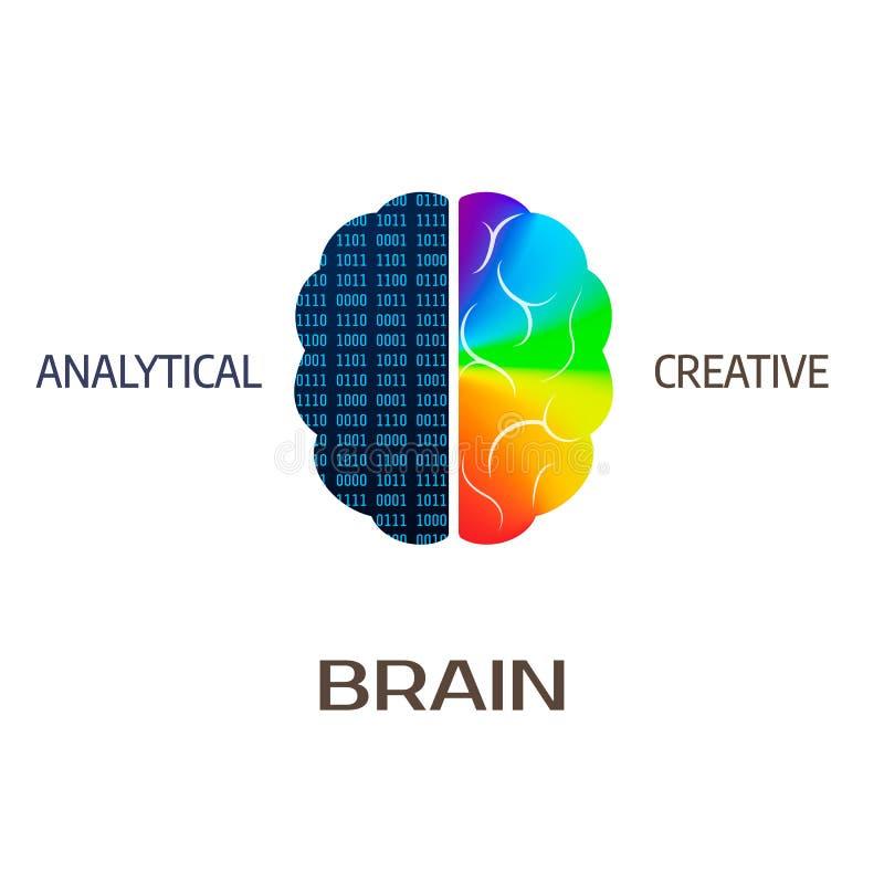 Brain Icon Vänster analytisk hjärndel - Höger halvklot av den idérika hjärnan - också vektor för coreldrawillustration vektor illustrationer