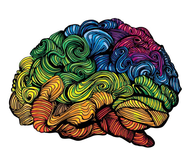 Brain Idea Illustration Gekritzelvektorkonzept über menschliches Gehirn Kreative Illustration mit farbigem Gehirn und Grau lizenzfreie abbildung