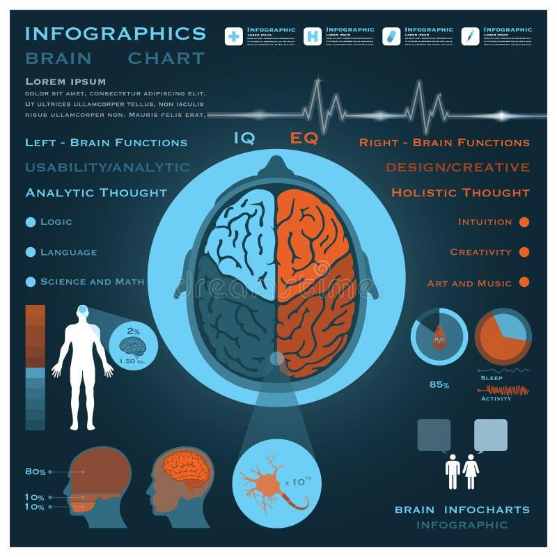 Brain Infographic Infocharts Health And médico ilustração do vetor