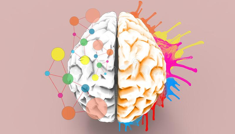 Brain left and right creativity functions Sketch. Concept Art and Creation / Illustration vector illustration