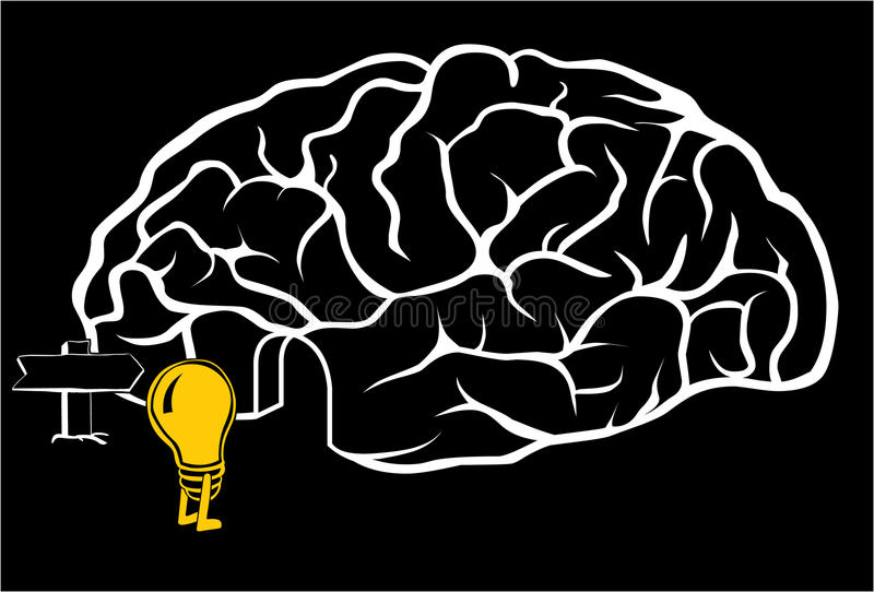 Download Brain with a new idea stock illustration. Image of brilliant - 12685946