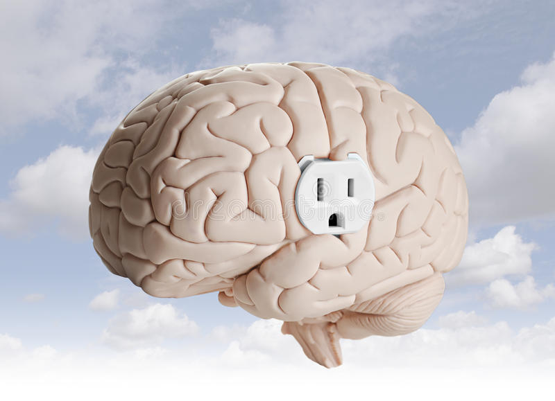 Brain power royalty free stock images