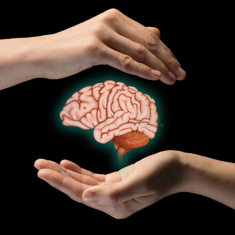 Brain protection and intellectual rights concept stock photography