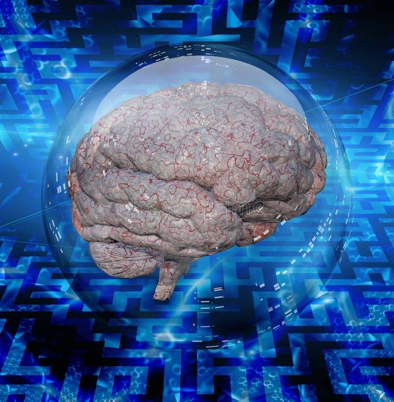 Brain Puzzle illustration libre de droits