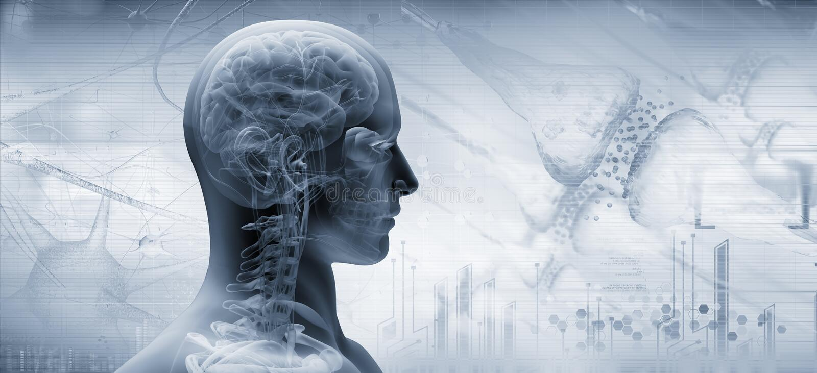Brain, thinking concept. 3d illustration stock illustration