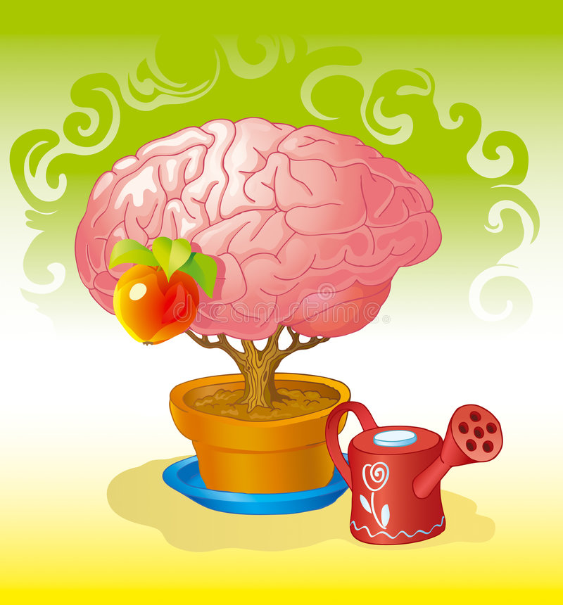 Brain a tree. Human brain in the form of a crone of a tree growing from a pot with the ground royalty free illustration