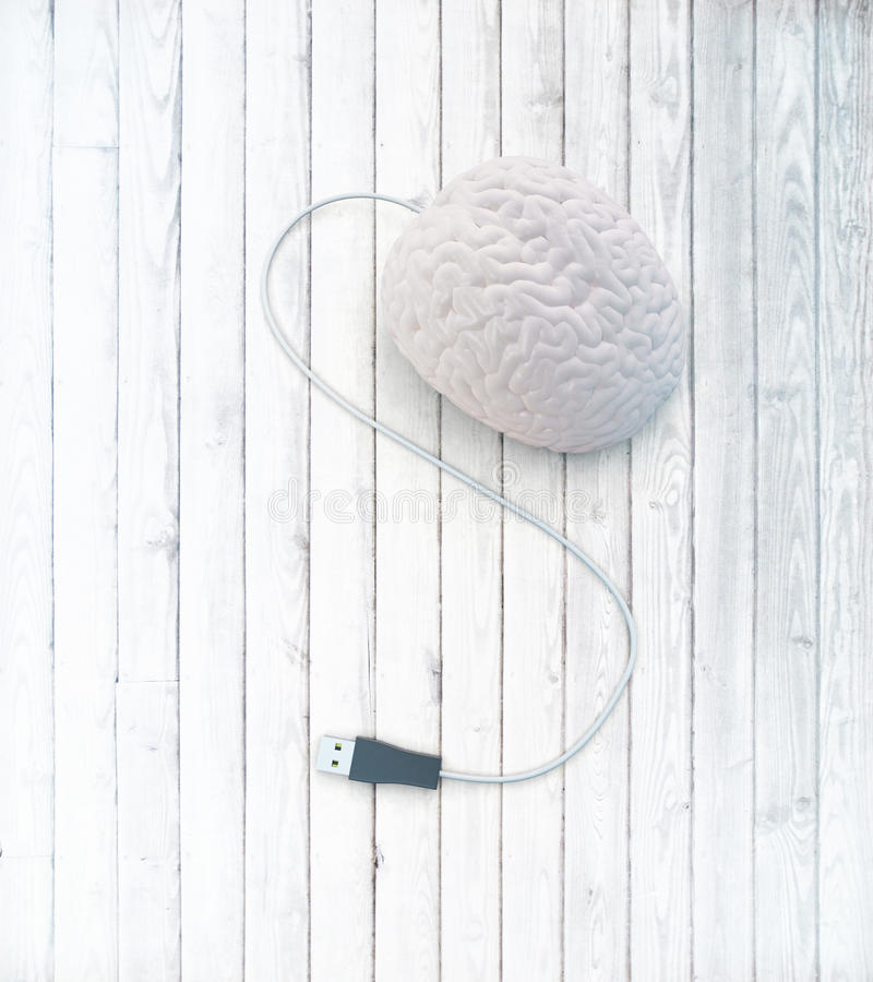 Brain usb plug. Brainstorming concept with abstract human brain usb plug on white wooden surface. 3D Rendering royalty free illustration