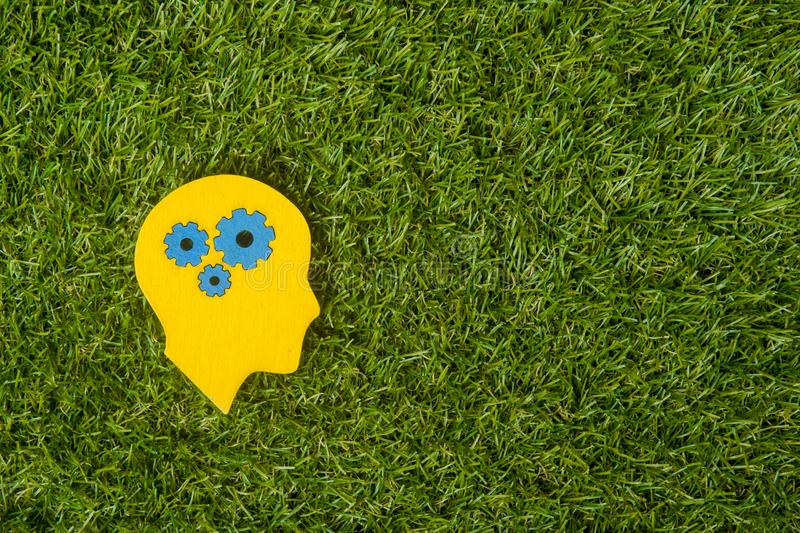 Brain works concept. Thinking, creativity concept of the human head with gears on green grass background stock photo