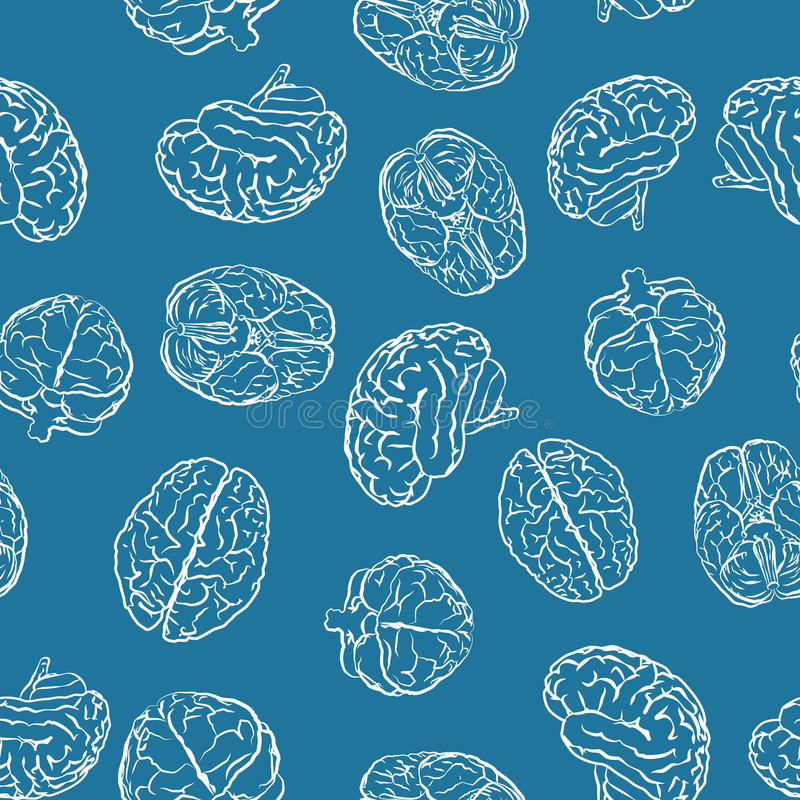 Brains from different sides on blue seamless vector illustration