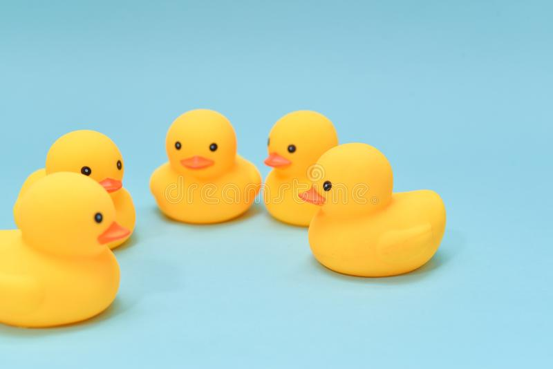 Brainstorm concept, rubber ducky are gathering royalty free stock photography