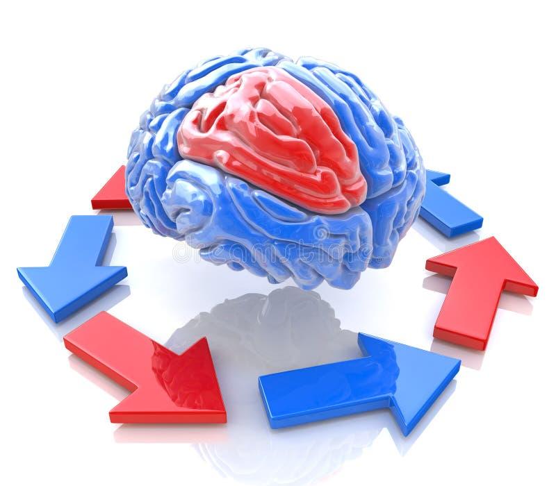 Download Brainstorming stock illustration. Image of human, medical - 32352613