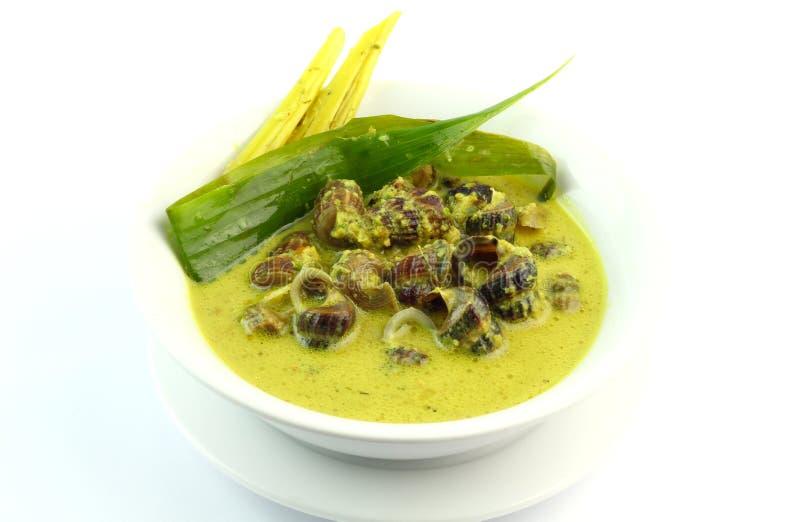 Braised морепродукты Belitung в пряном молоке или Siput Sedut Masak Lemak Cili Api стоковая фотография
