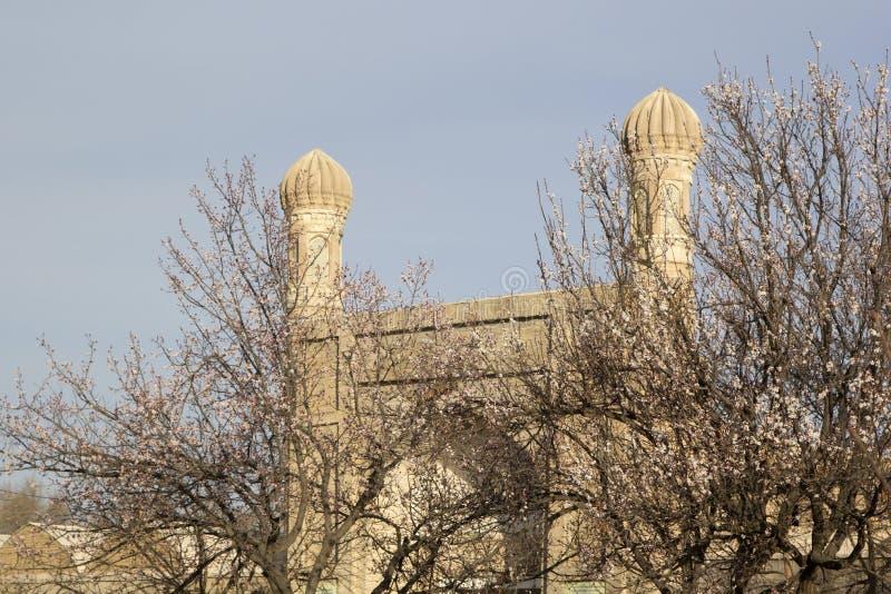 Brama mauzoleum Rukhabad w Samarkand w wczesnej wiośnie, kwitnie owocowych drzewa fotografia royalty free