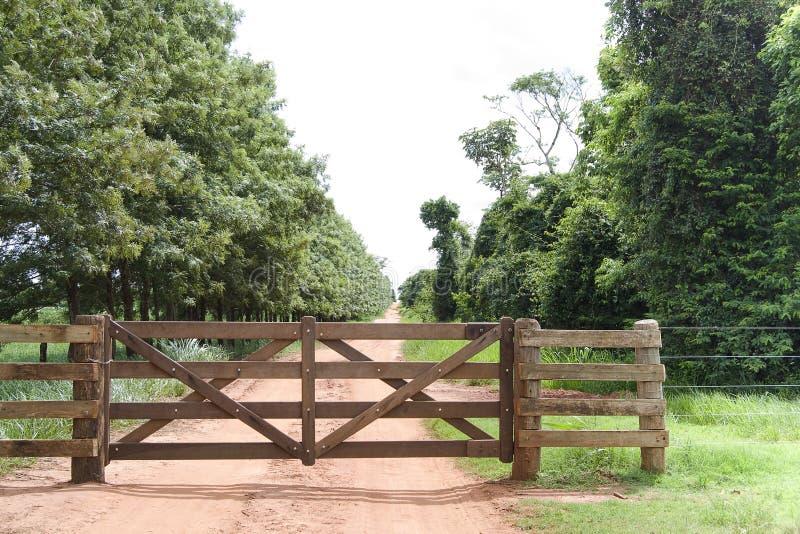 brama wiejska fotografia royalty free