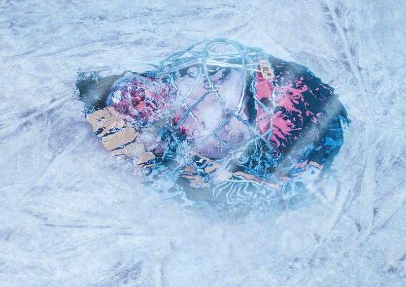 Bramkarz pod lodem fotografia stock