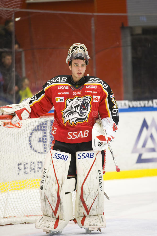 bramkarza gustafsson hokeja lód Johan zdjęcie stock