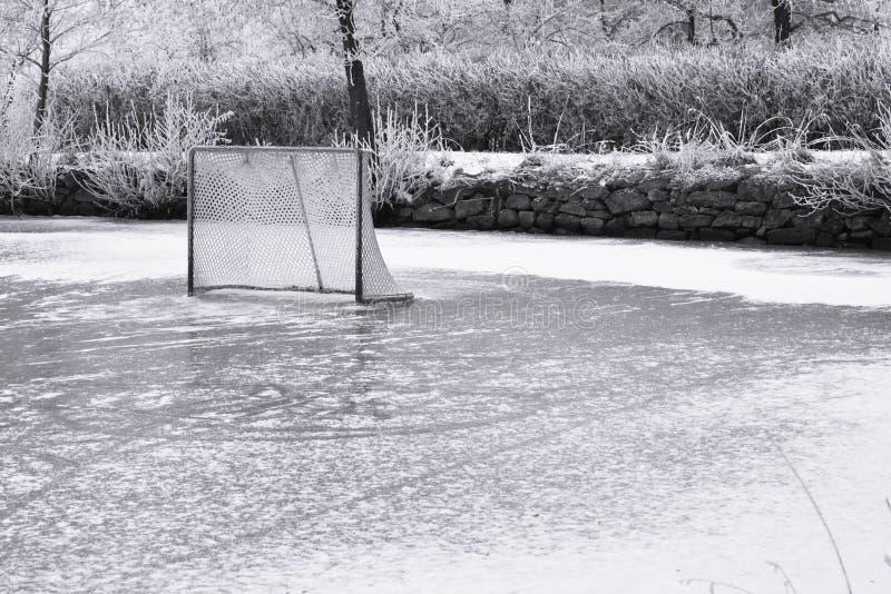 bramkowy hokeja lodu pierścionek obrazy stock