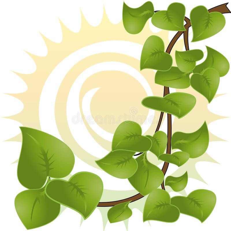 Branch. Tree branch , sun - vector illustration vector illustration