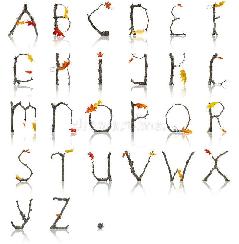 Branch_Autumn_Alphabet imagem de stock
