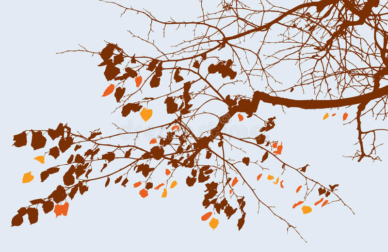 Branch of autumn tree stock illustration