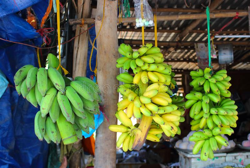 Branch of banana for sale in the street market stock images