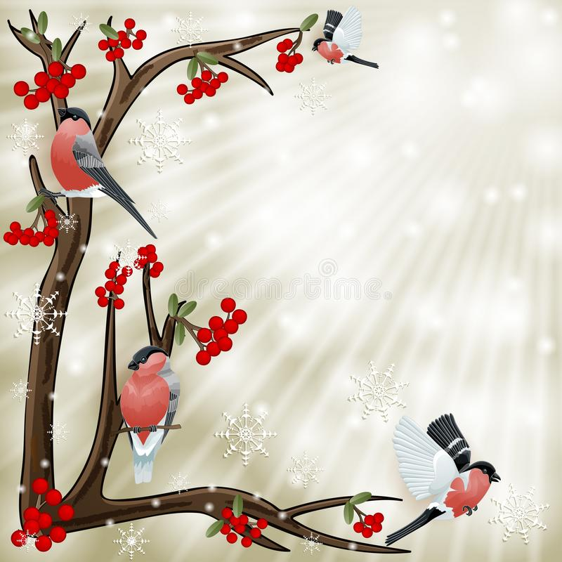 Branch and birds bullfinch with space for text. On shiny background vector illustration