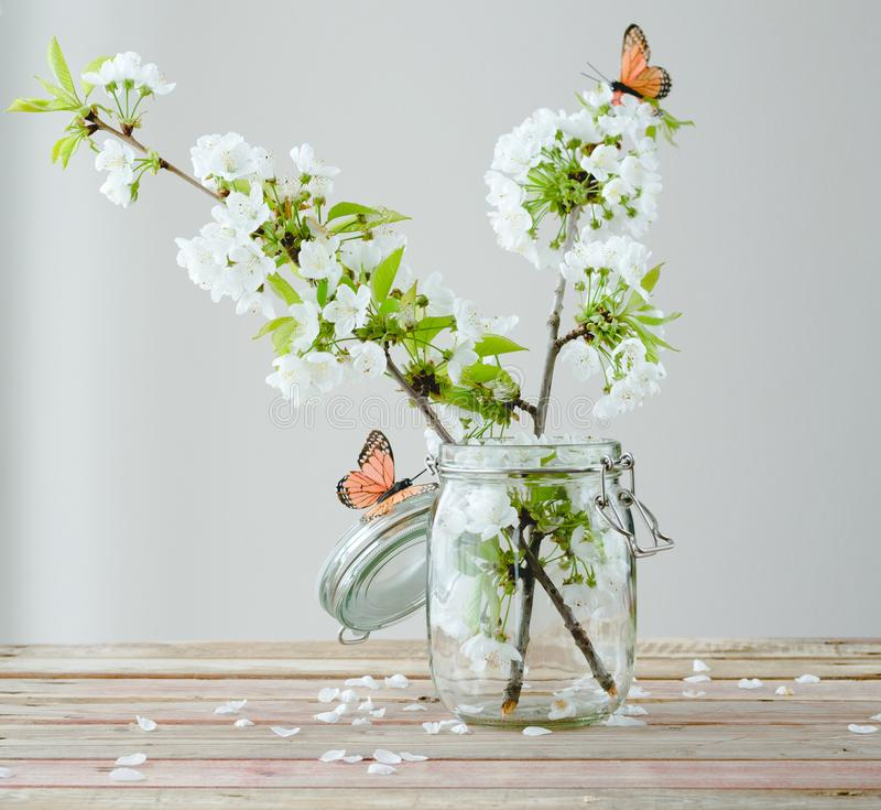 Branch of cherry blossom with butterflies in glass jar on wooden stock image