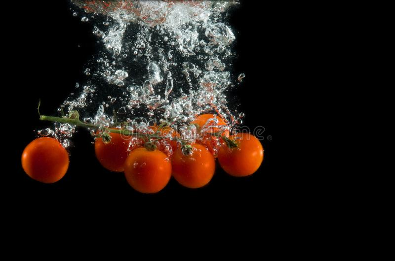 The branch of cherry tomatoes in water splash with bubbles on a black background. royalty free stock photo