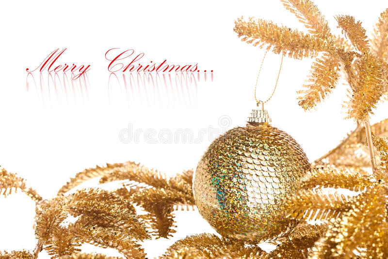 Download Branch Of Christmas Tree Royalty Free Stock Images - Image: 17449219